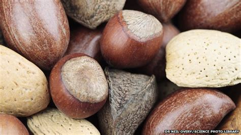 Eating Nuts During Pregnancy 'may Curb Allergies'