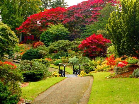 pictures of gardens lush greenery pictures beautiful gardens wonderwordz