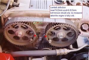 Lotus Elan M100 Cambelt Change