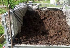 Use manure but plants still not florishing for Horse manure for garden