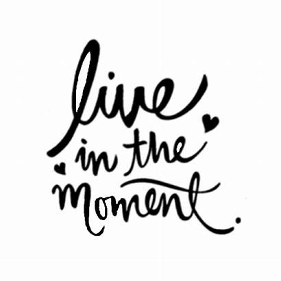 Quotes Sayings Picsart Liveinthemoment Sticker