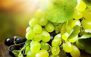 Black and Green Grapes wallpaper | Best HD Wallpapers