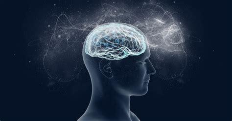 neuropsychology programs ba phd  psychology