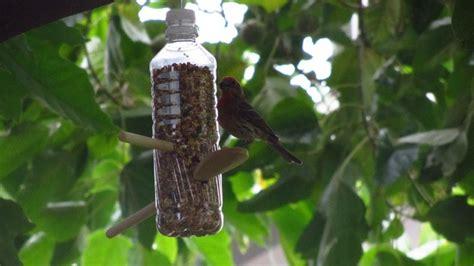 niger seed bird feeders bird cages