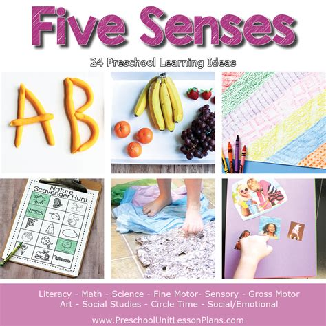 a year of preschool lesson plans bundle where 5 | Preschool Lesson Plans Five Senses