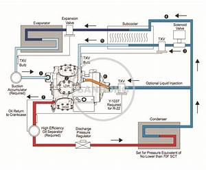Simple Refrigerator Wiring Diagram True Refrigerator