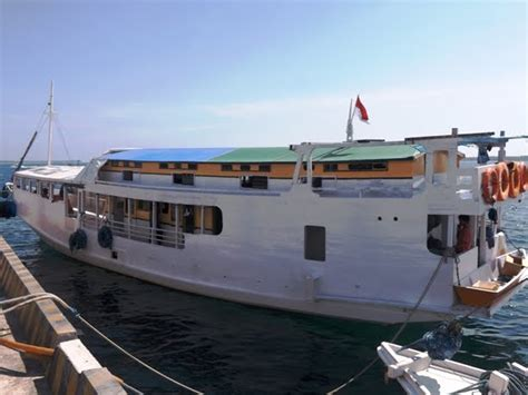 Boat Trip Lombok To Flores by Low Cost Boat Cruise Flores Rinca Komodo Lombok Gili