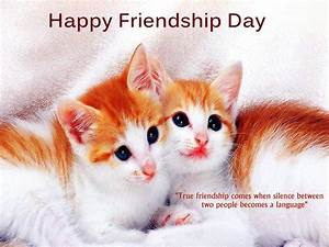 Download Happy Friendship Day Wallpaper in HD Wallpaper HD ...