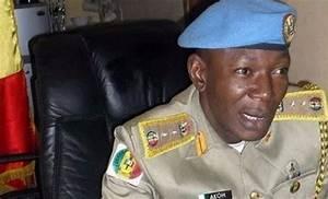 Falana Condemns Arrest, Parading Of Peace Corps Commandant ...