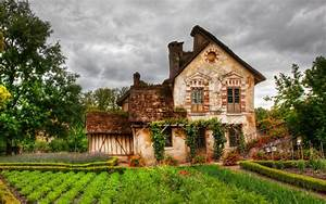 Fairy Tale Cottage wallpaper