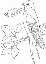 Coloring Sock Monkey Library Clipart Pages Swallow Popular sketch template