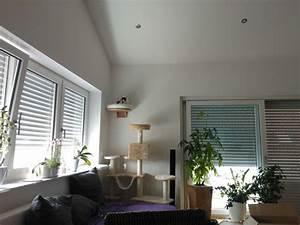 Richtige Luftfeuchtigkeit In Der Wohnung : katzenbaum standort richtige wahl des katzenbaum standorts tipps ~ Markanthonyermac.com Haus und Dekorationen