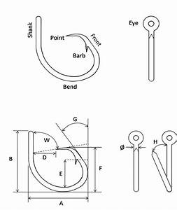 Anatomy Of A Circle Hook  Basic Components  Upper Panel