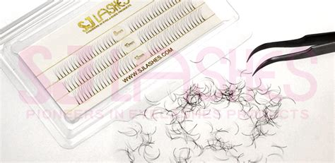 pre fanned volume lashes 0 07mm 2d pre fanned russian volume lashes fds02a tray