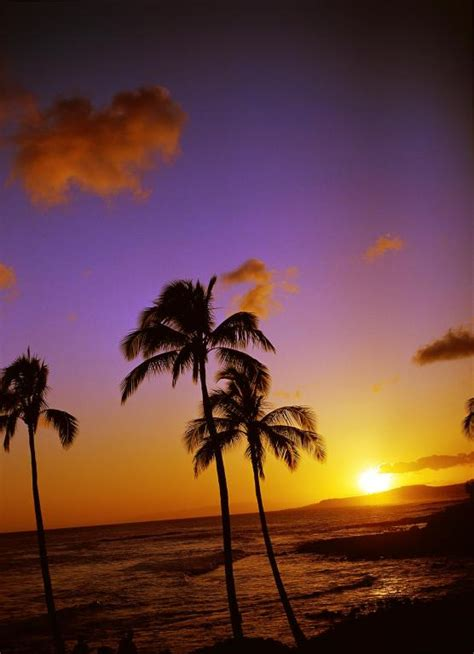 hawaii sunset kauai travel information visit