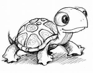 Sea Turtle Outline - Cliparts.co