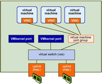 vnetwork standard switch environment
