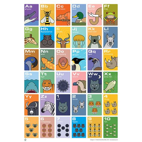 animal alphabet  counting poster  andy tuohy design
