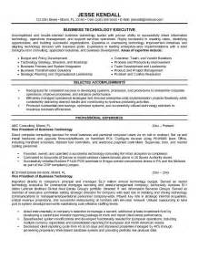 resume sles free download pdf resume objective business development manager