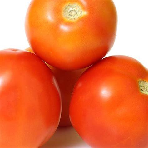 buy fresho tomato hybrid  kg    price bigbasket