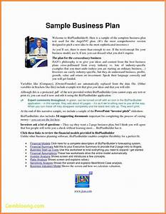 new real estate business plan template best templates With business link business plan template