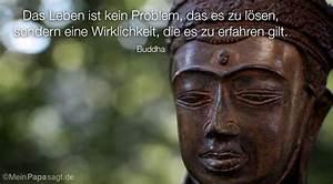 Buddha Sprüche Bilder : mein papa sagt zitate von buddha mit bild ~ Orissabook.com Haus und Dekorationen