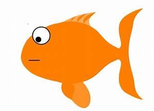 Orange Sad Fish Clip Art at Clker.com - vector clip art ...