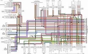 Electrical Wiring Diagram Harley Davidson