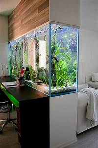 What Are The 5 Best And Simple Aquarium Decoration Ideas