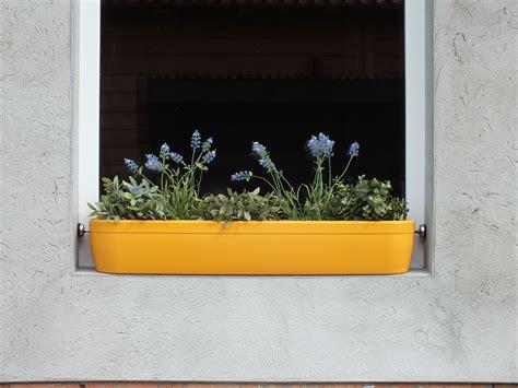 Blumenkasten Für Die Fensterbank. Sicher Ohne Bohren