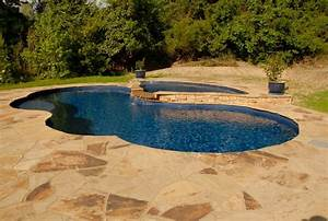Freeform Pools - Traditional - Pool - wilmington - by