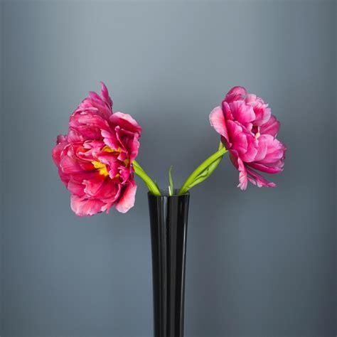 flowers tall black glass vase  flowers ipad iphone