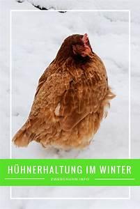 Hochbeet Winterfest Machen : h hnerhaltung im winter was ist zu beachten h hnerstall winterfest machen h hnerstall heizen ~ Orissabook.com Haus und Dekorationen