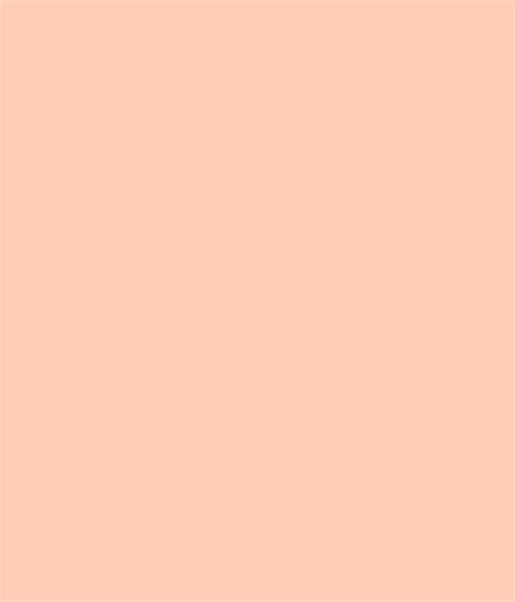 buy asian paints ace exterior emulsion sugared peach