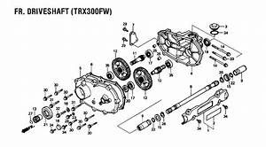 Wiring Diagram For 2009 Honda Trx 250 Tm  Honda  Wiring