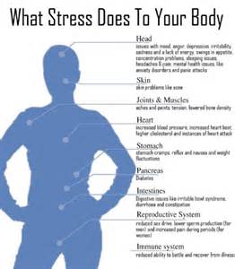 Diagram of How Stress Affects the Body