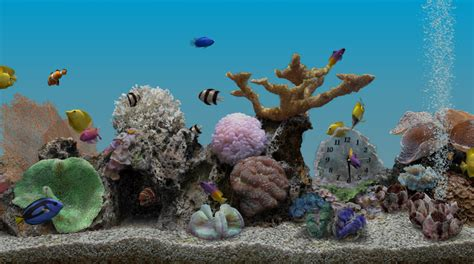 marine aquarium 3 2 live wallpaper v1 11 apktechglen techglen apps for pc