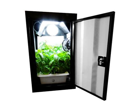 the best stealth grow box for the moneycollege of cannabis
