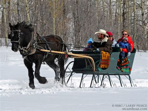 17 best images about sleigh ride on seasons