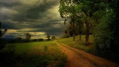Country Road Background Desktop Pixelstalk Trees