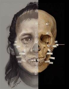 Forensic Art  Drawing To Depict The Deceased For Identification   Forensic Anthropology Center