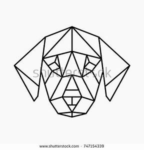 Vector Polygonal Triangular Illustration Animal Head Stock ...