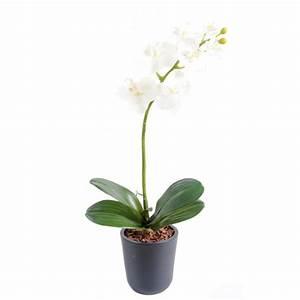 Grande Plante Artificielle : grande plante artificielle prix achat vente en ligne ~ Teatrodelosmanantiales.com Idées de Décoration
