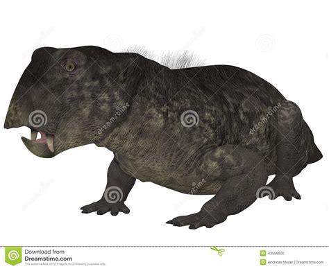 Lystrosaurus- 3d Dinosaur Royalty-free Stock Photography