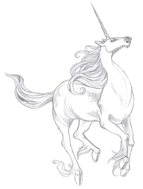 Best Unicorn Drawings Ideas And Images On Bing Find What You Ll Love