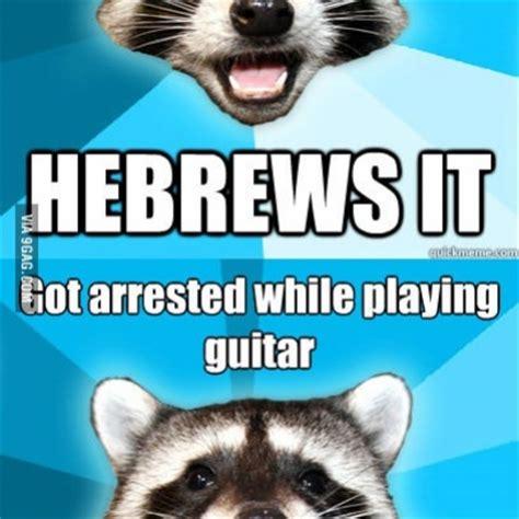 Lame Pun Coon Meme - pun raccoon meme memes