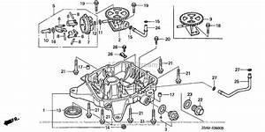 Honda Engines Gxv530 Dxa1 Engine  Jpn  Vin  Gjarm