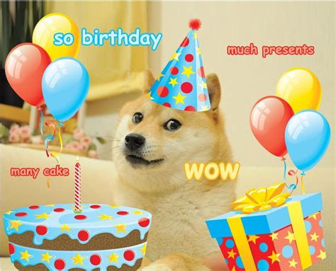 images   doge  funny wow