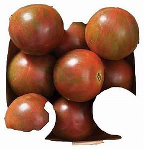 Bio Saatgut Kaufen : mediterrane samen exotische samen bio saatgut tomaten paprika bio tomatensamen saatgut ~ A.2002-acura-tl-radio.info Haus und Dekorationen
