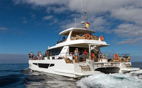 Best Catamaran Tour In Puerto Rico by Boat Trip In Gran Canaria On On The Afrikat Catamaran 2018